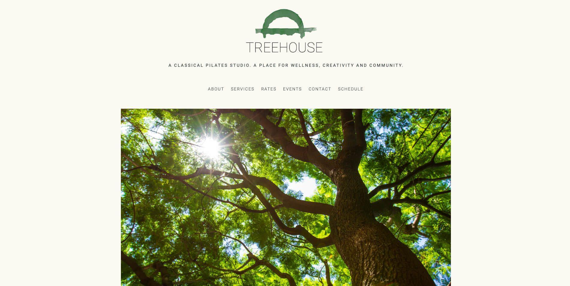 treehouse-new-tree-e1568748134965.jpg